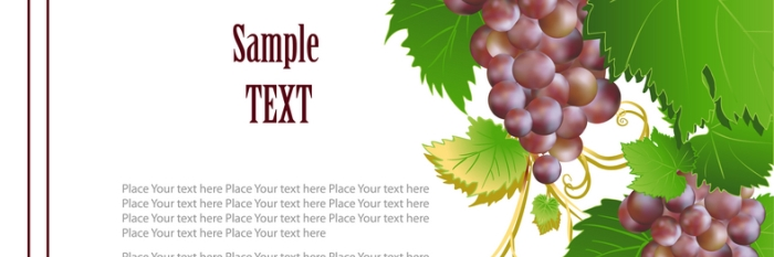 5 key factors for winery website success
